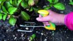 gardening arthritis, weeding arthritis, peta arthritis, arthritis digest