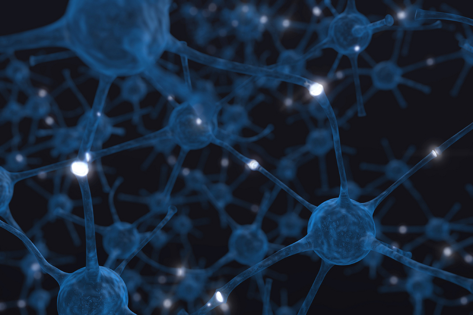 Fibromyalgia and the role of brain connectivity – new findingsLike what you see? Join our newsletter to keep up to date with the latest research in the arthritis arena.