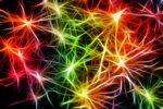 serotonin, fibromyalgia, vitamin D, fibromyalgia support, fibromyalgia information
